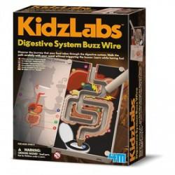 4M emésztőrendszer labirintus készlet - KIDZ Labz játékok - KIDZ Labz játékok 4M